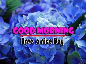 Good Morning Wallpaper Download