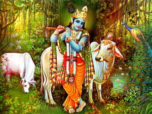 Lord Krishna Images Pics pictures Free Download